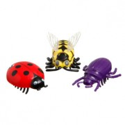 Crazy Bug - ringi jooksev putukas