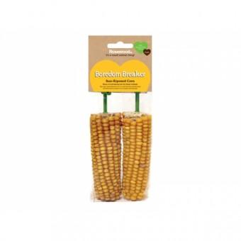 2 Pk Corn On The Cob - söödav maisitõlvik närilistele